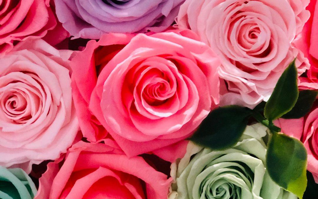 LITERARY AGENTS AND MOTHER'S DAY